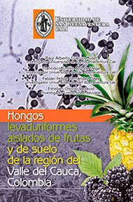 hongos-levaduriformes
