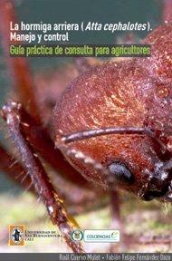 hormiga-arriera-atta-cephalotes